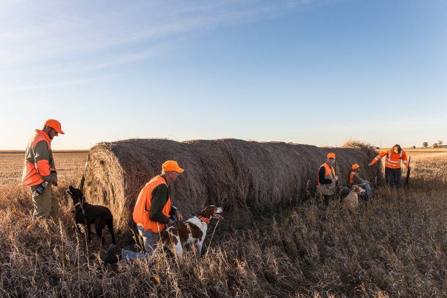Our group hides behind hay bales to hide from the pheasants in a nearby cornfield as we wait for sunset on the last day of our hunt.