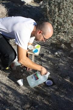 Mustard research at Los Osos