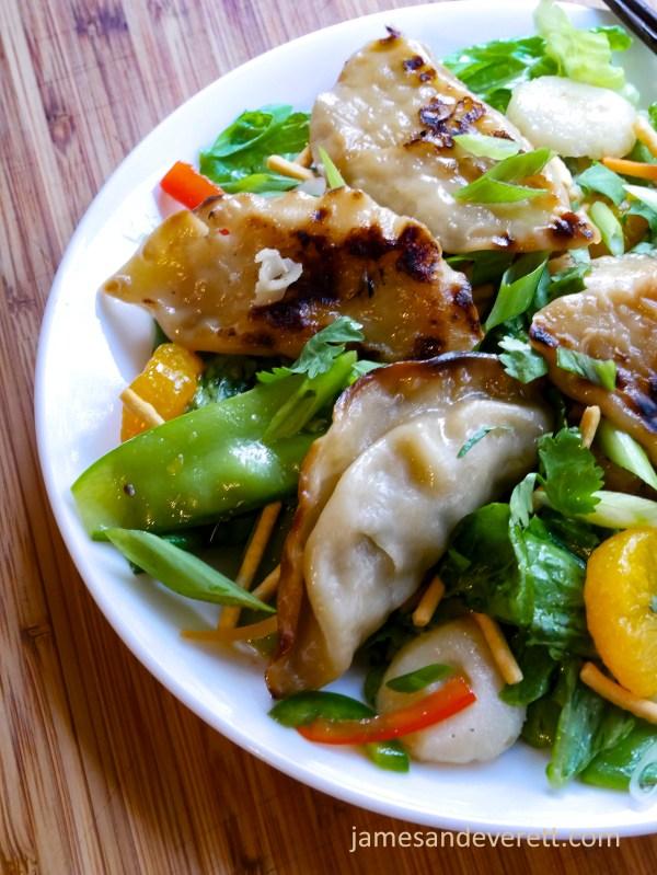 Asian Pot Sticker Salad