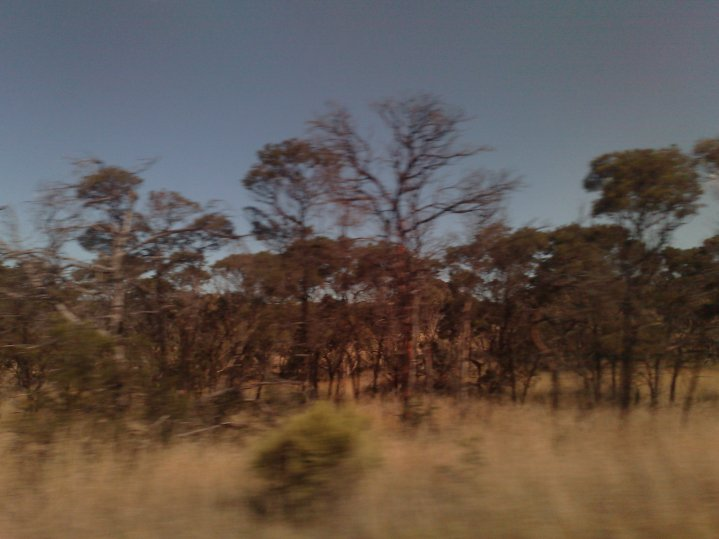A view from the bus, travelling between Canberra and Sydney.