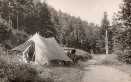 Camping in the Vosges