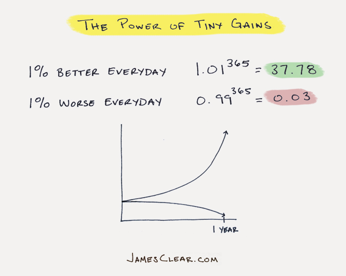 tiny gains with habits