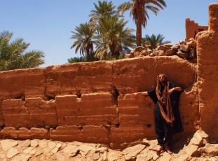 at an oasis, Sahara Desert, Morocco