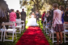 Z&K-WEDDING-BOTANIC-GARDENS-ADELAIDE-2