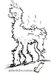 my dead llama