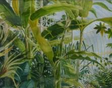 Wittgenstein's Botanic Bliss - James F.Moore