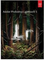 Lightroom 5 Upright