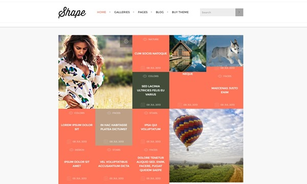 Shape – Photography WordPress Theme by TeslaTheme