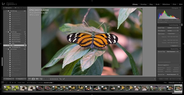 Killer Lightroom Tips for New Users: Use Collections and Not Folders by Scott Kelby