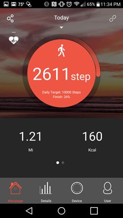 Very Fit 2.0 Pedometer stats