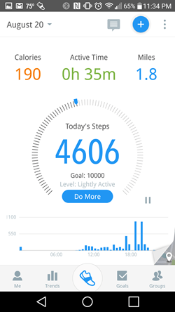 Pacer Pedometer Stats