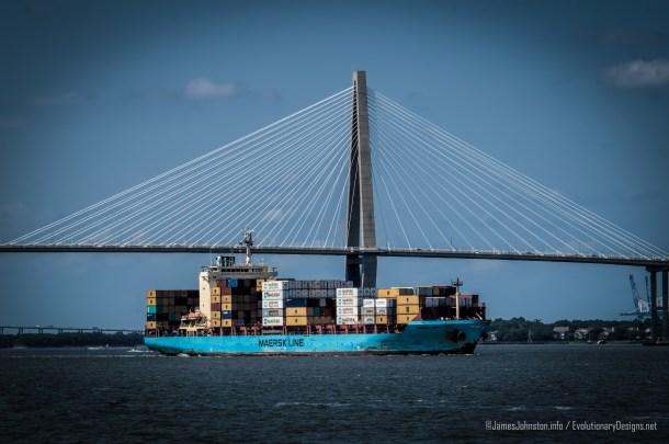 Maersk Visby Cargo Ship