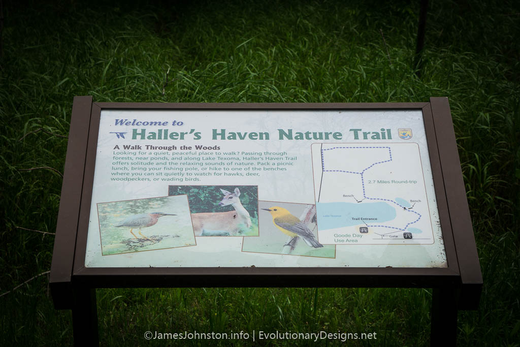 Hiking Haller's Haven Trail – Hagerman National Wildlife Refuge