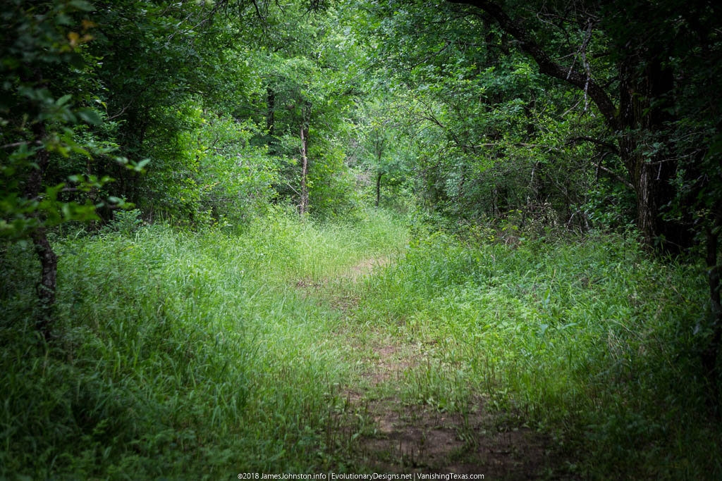 Crow Hill Trail – Hagerman National Wildlife Refuge – The Trail