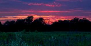 July 11th Sunset