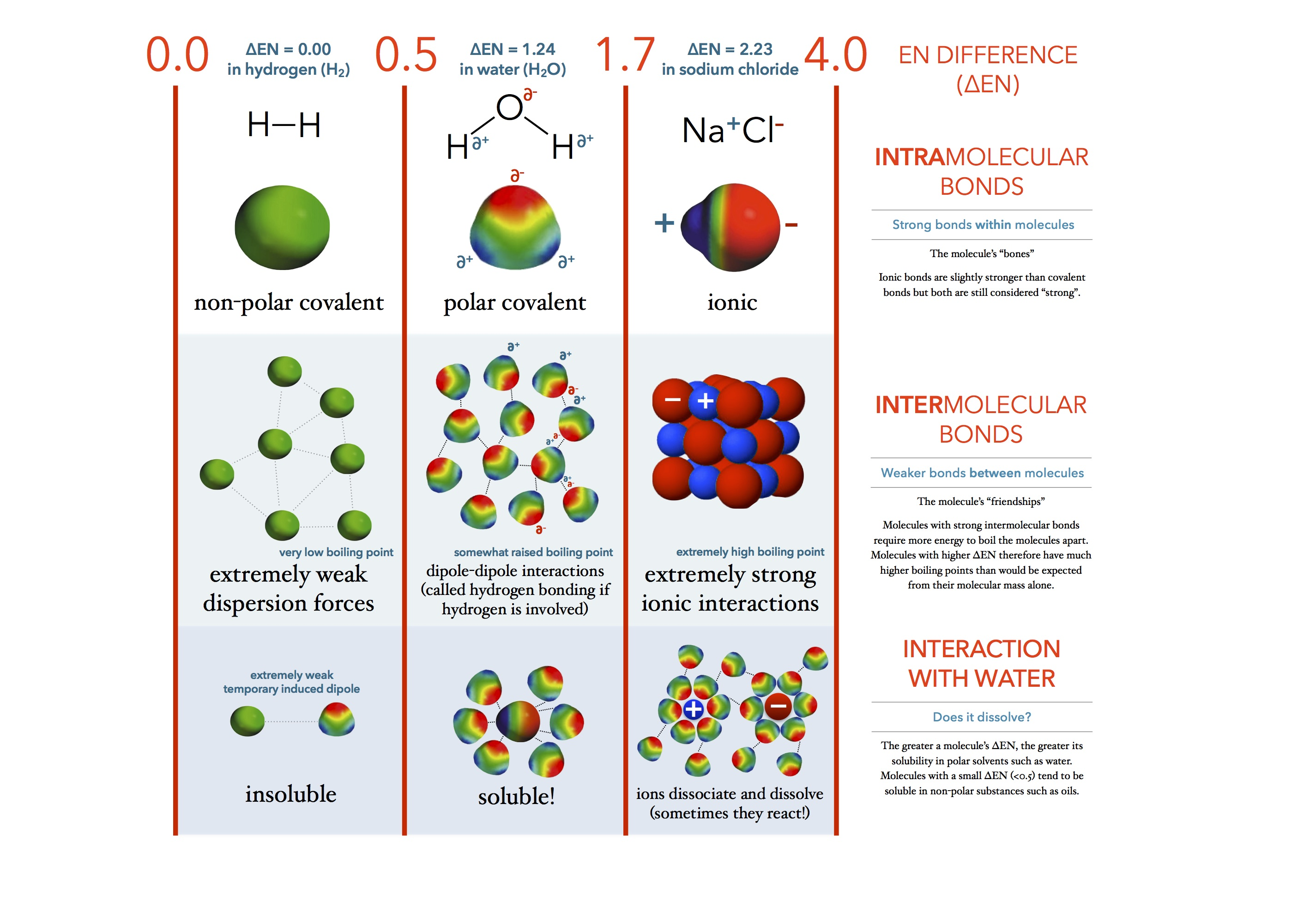 Infographic Defining Bonds As Electronegativity