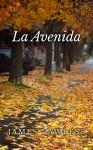 la_avenida_kindle (3)