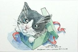 Boxy Kitty