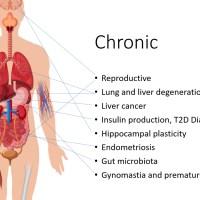 The Disease Burden of Endocrine Disrupting Chemicals - jameslyonsweiler.com