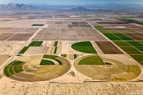 amazing-fields-from-above-3-nature-landscapes-photography