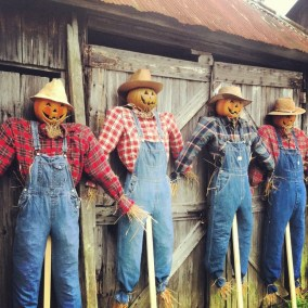 Scarecrow Morning Roll Call Before Hitting the Fields