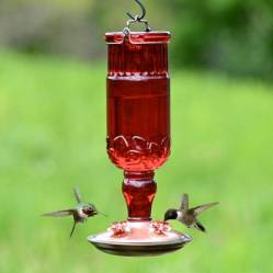 Red Glass Antique Style Bottle Hummingbird Feeder