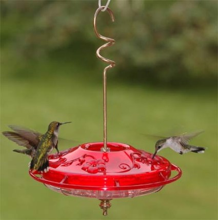 Small Dish Hummingbird Feeder