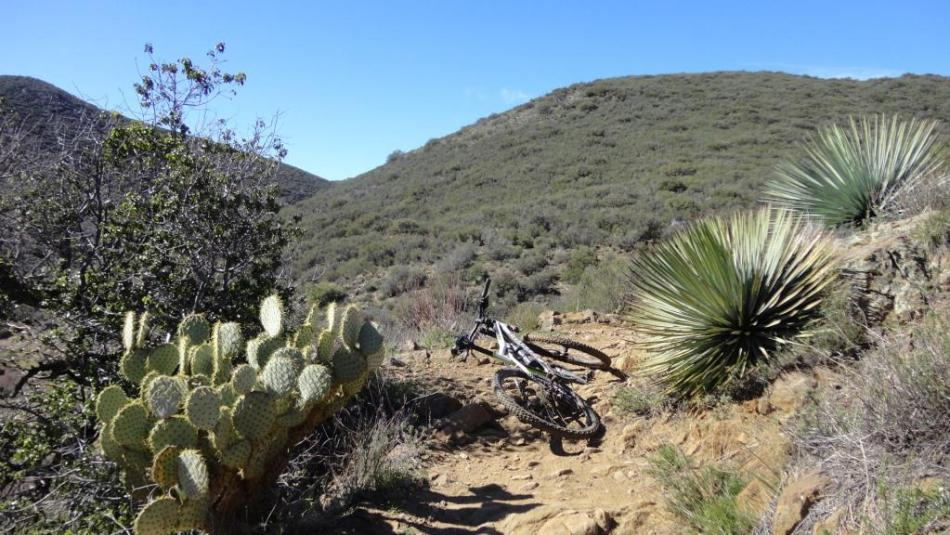 Noble Canyon, San Diego, CA (4)