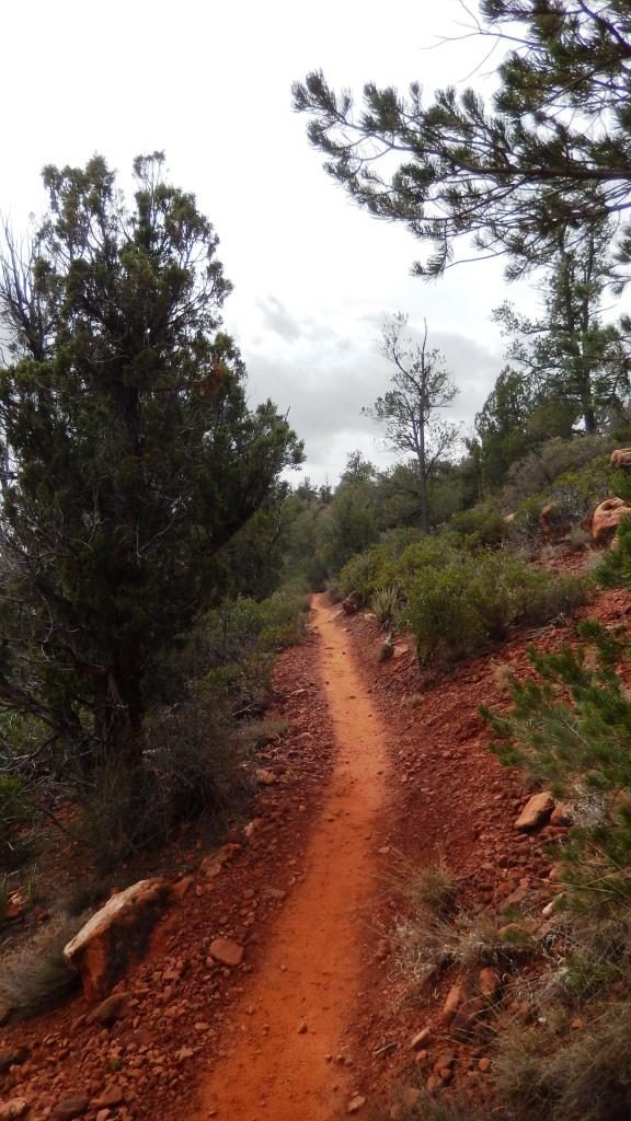 Leading to Mescal