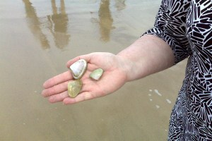 Sue holds some pippies or cockles as they are known in South Australia
