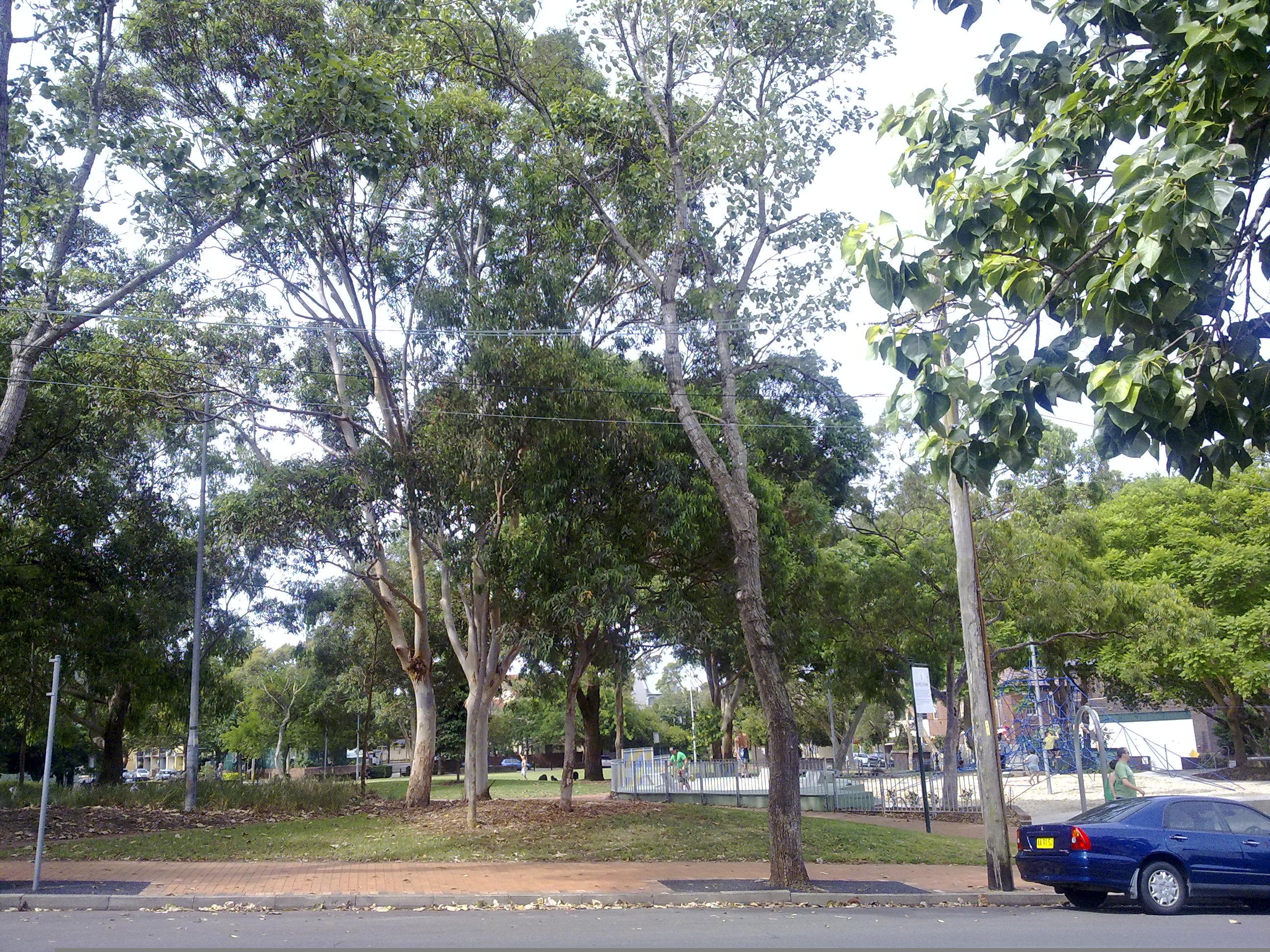 Ward Park on Lansdowne Street in Surry Hills