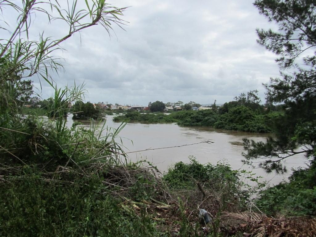 Duck pond viewed from near Italo-Australian Club, North Lismore