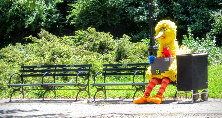 #bucketlist Visit New York and see Big Bird in Central Park. Done!