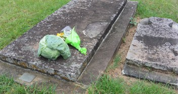 Grave for Governor Phillip's servant who introduced farming at Old Government House, recognised with flowers and a cabbage.