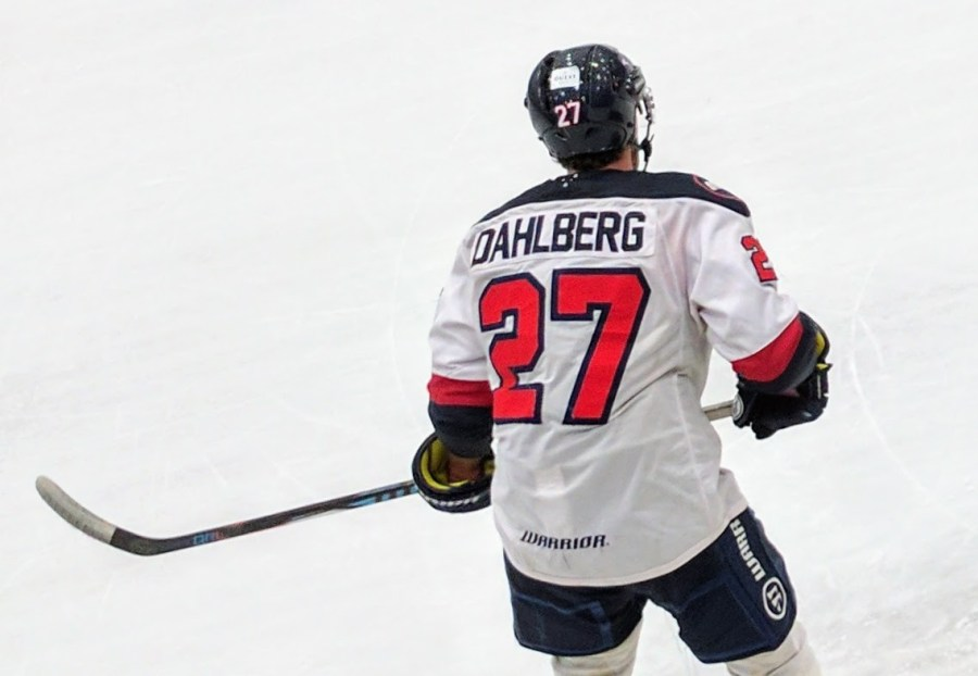 Dahlberg for Sydney Bears