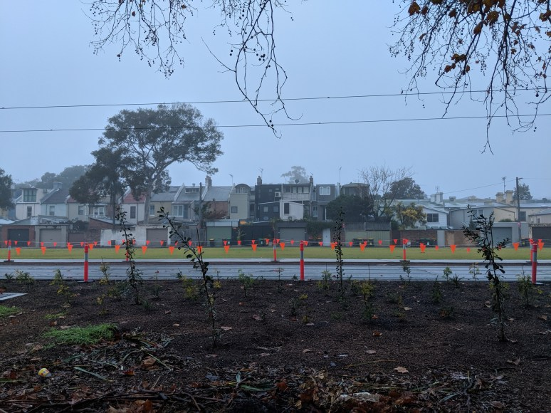 Site of the new Wimbo Park Community Garden?