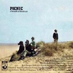 18-various-picnic