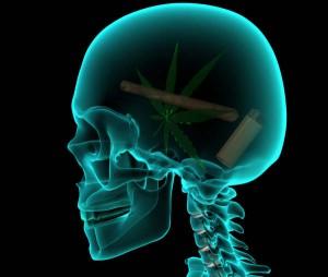 NIDA & the Facts on Marijuana (3/6)