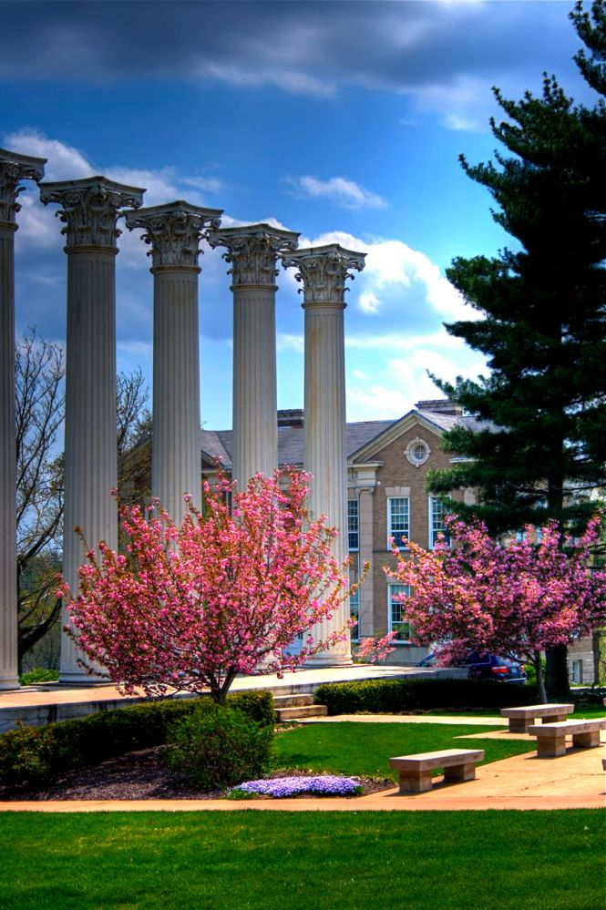 A love letter to a liberal arts education (1/6)