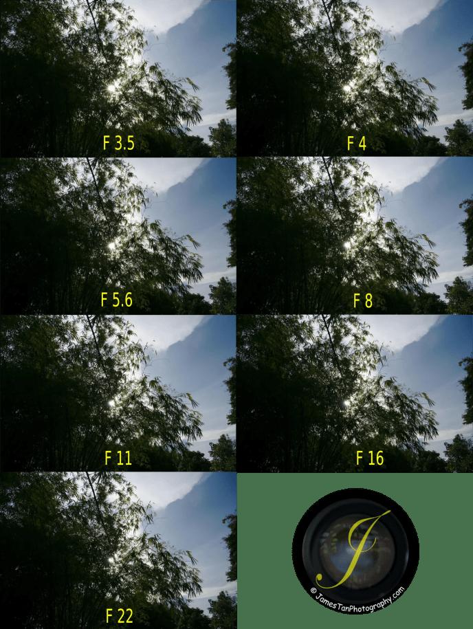 18mm Flare Comparison