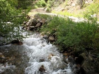 Creek on Ward