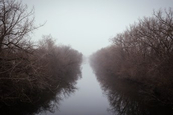 Foggy River Morning. Chicago, IL 2015