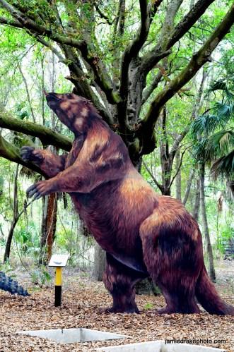 Dinosaur Sloth-thing display