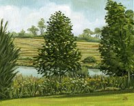 'Pond Near Orton, Ontario - Study' (2011) by Jamie Kapitain. Oil on canvas board, 8x10 inches.