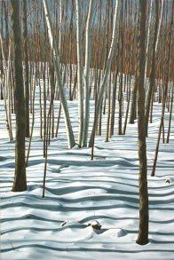 'Winter Birch, Mt. Nemo No.3' (2012)