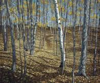 'Late Autumn Near Fortescue Lake' (2012) by Jamie Kapitain