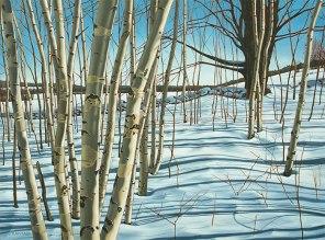 'Winter Birches, Mono Cliffs No.3′ (2014) by Jamie Kapitain