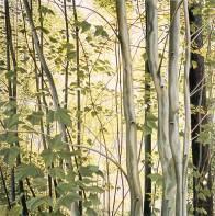 'Summer Cottage Drive, Salmon Lake' (2005) by Jamie Kapitain