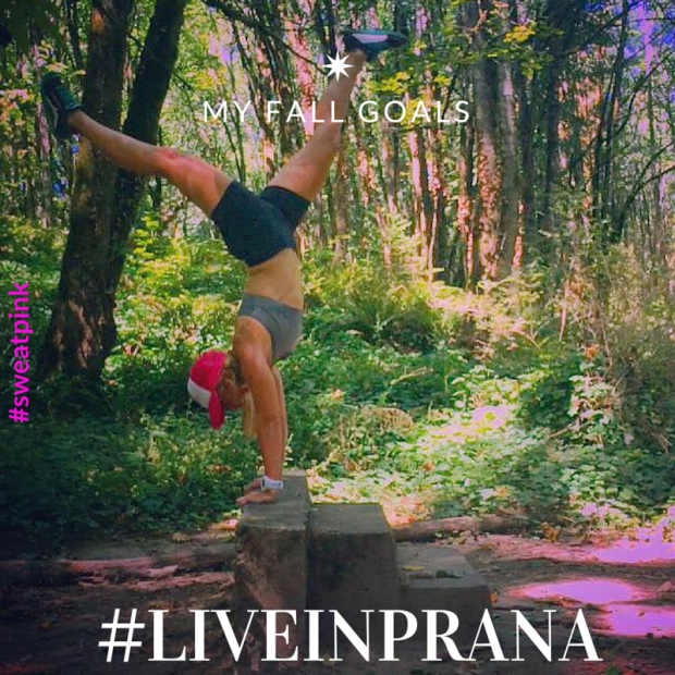 fall goals liveinprana with sweat pink