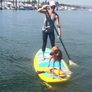 SUP gear - the Quivver